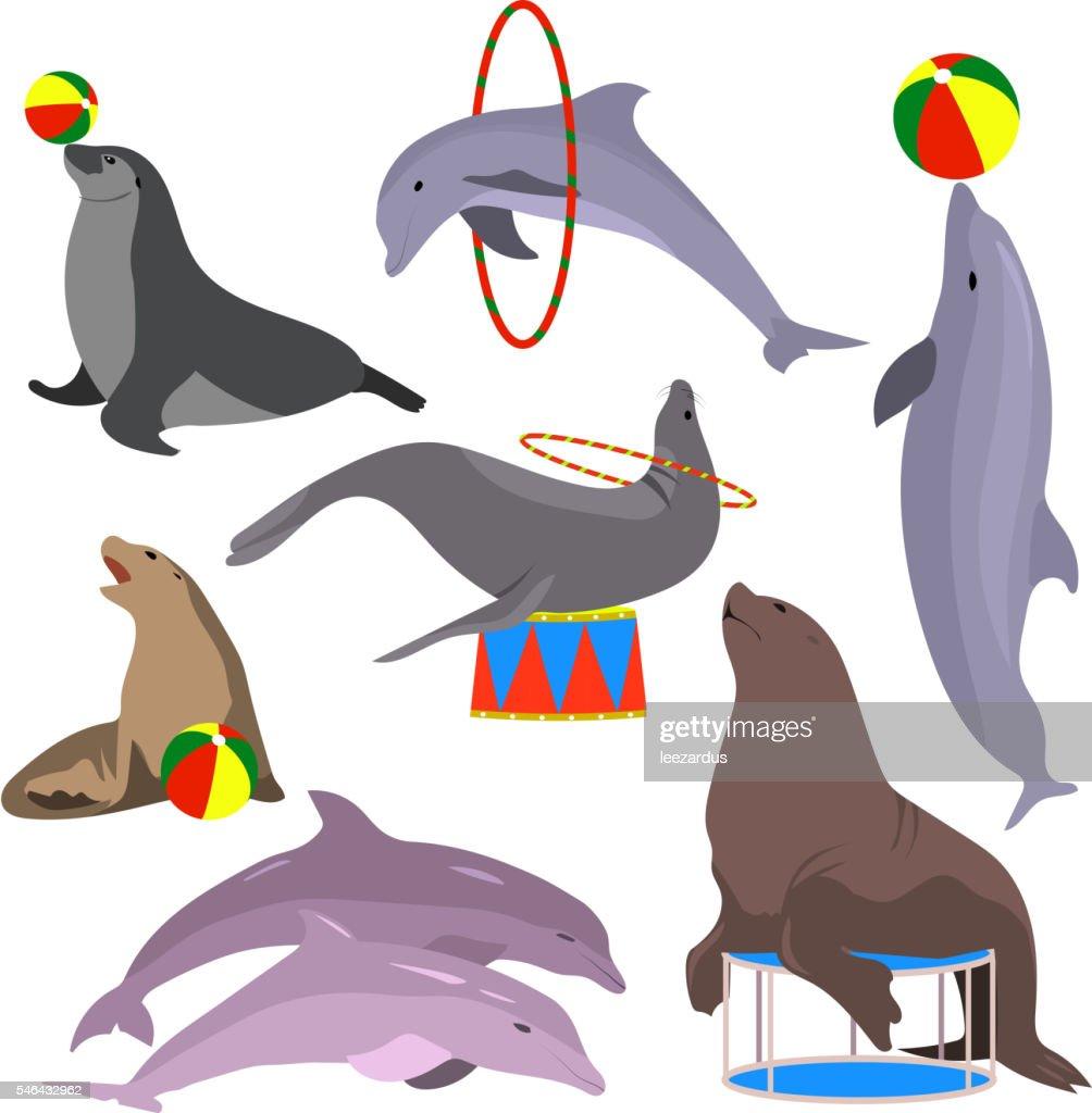 Marine circus animals set. Vector illustration. Flat.