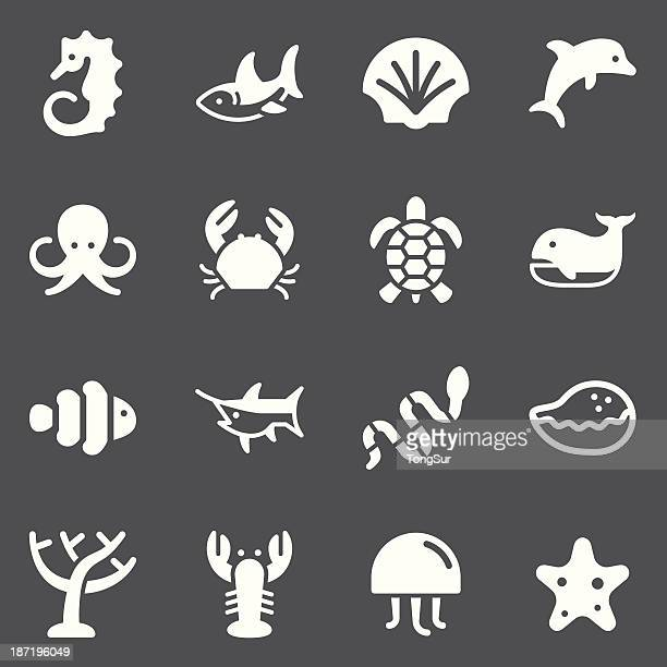 Marine Life Icons | set - White Series