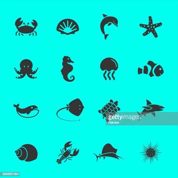Marine Life Symbole