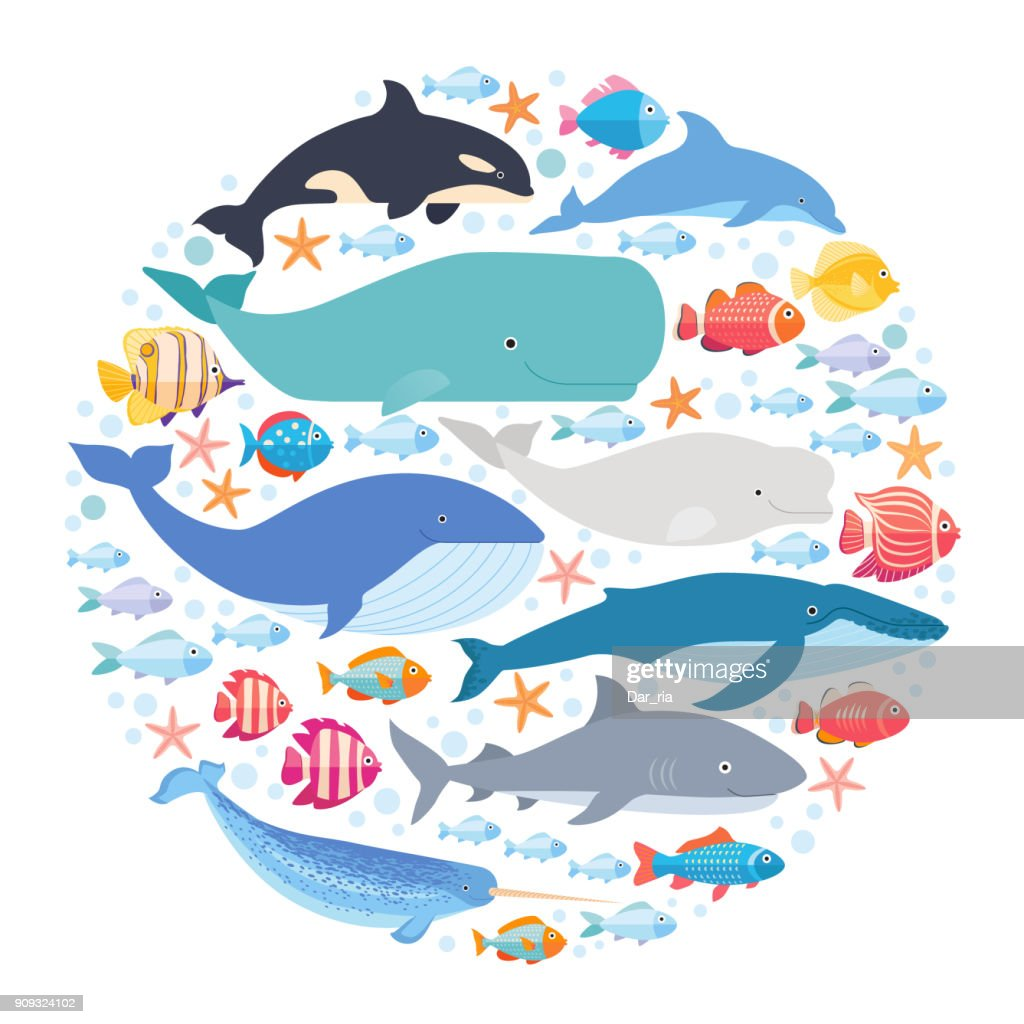 Marine mammals and fishes set in circle. Narwhal, blue whale, dolphin, beluga whale, humpback whale, bowhead and sperm whale vector isolated