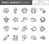 Marine theme pixel perfect thin line icons. 48x48
