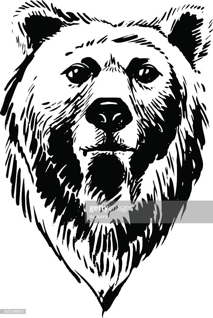 Marker hand-drawn forest animals: bear