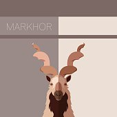Markhor flat postcard