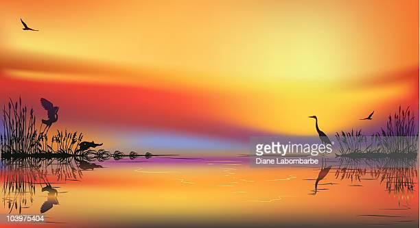 marsh sunset - marsh stock illustrations
