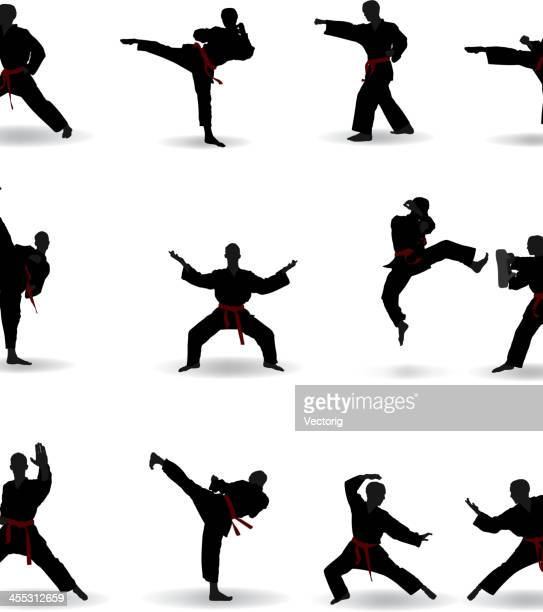 martial arts - fighting stance stock illustrations, clip art, cartoons, & icons