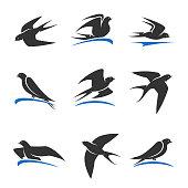 Martlet set. Vector bird