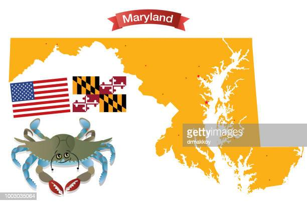 maryland and blue crab - blue crab stock illustrations