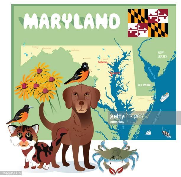 maryland state symbols - chesapeake bay stock illustrations, clip art, cartoons, & icons