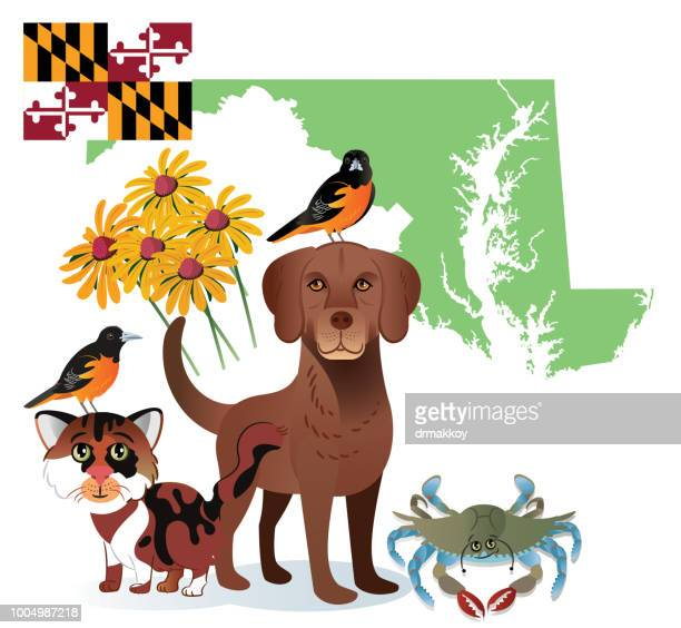 maryland state - baltimore maryland stock illustrations, clip art, cartoons, & icons