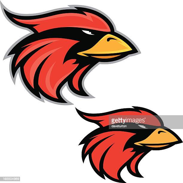 mascots using the head of cardinals on a white background - cardinal bird stock illustrations, clip art, cartoons, & icons