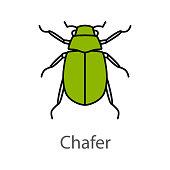 Maybug color icon