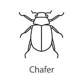 Maybug icon