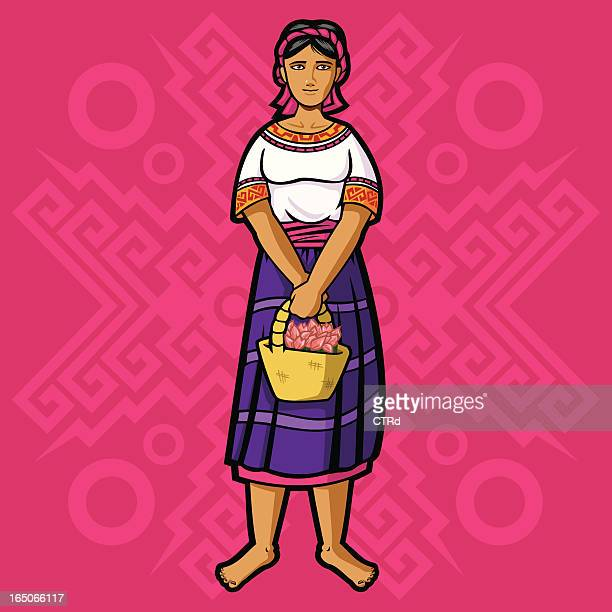 mazateca (mexican garment series) - latin american and hispanic stock illustrations