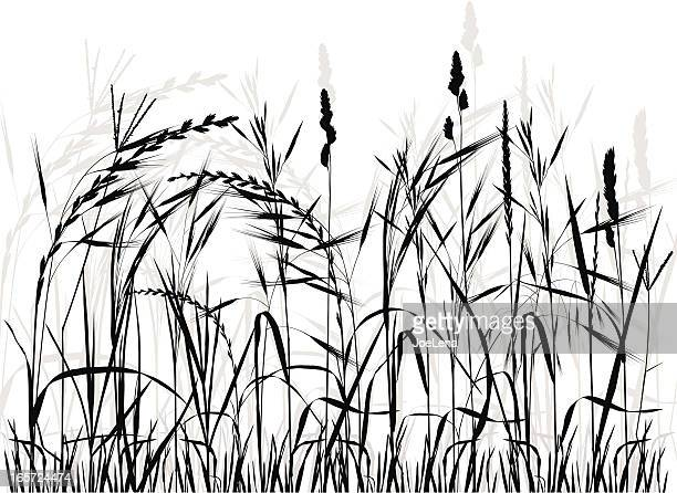 meadow silhouette - prairie stock illustrations, clip art, cartoons, & icons