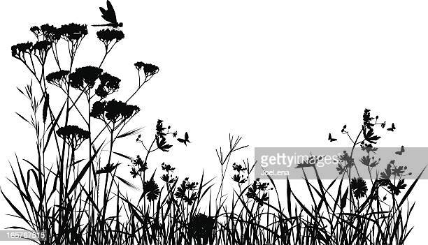 Meadow Silhouette