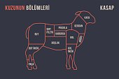 Meat cuts. Poster Butcher diagram and scheme - Lamb