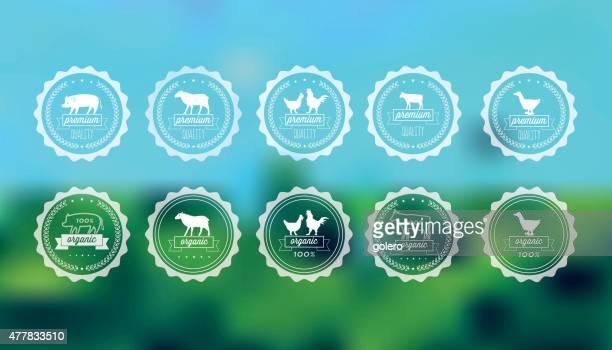 ilustraciones, imágenes clip art, dibujos animados e iconos de stock de la carne de calidad de las etiquetas en fondo borroso - carne de vaca