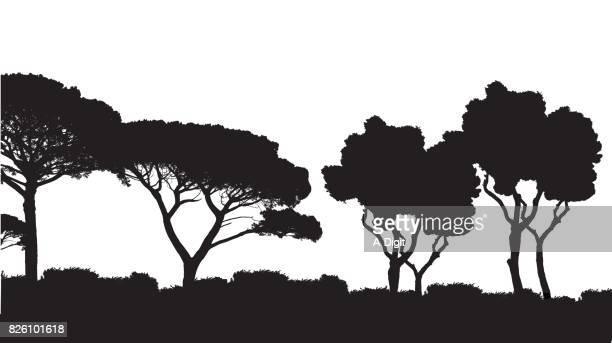 mediteranean landscape - treelined stock illustrations, clip art, cartoons, & icons