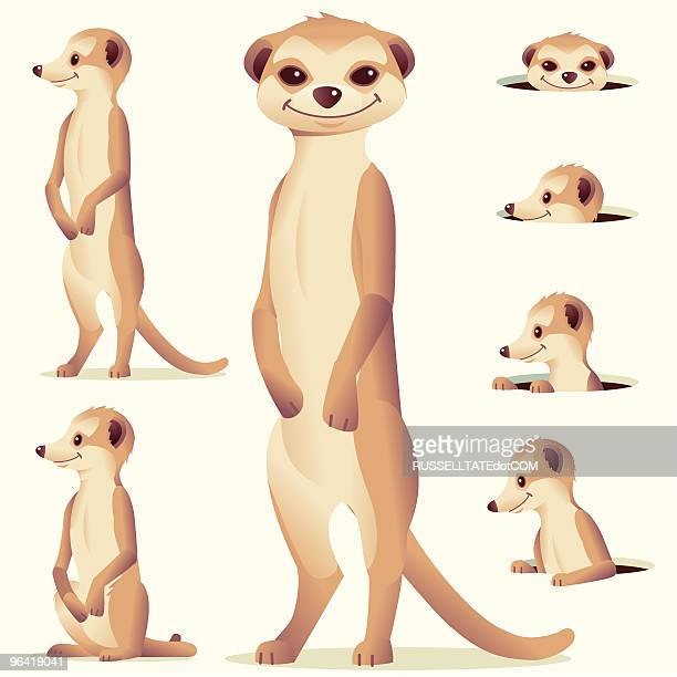 meerkat - group of animals stock illustrations, clip art, cartoons, & icons