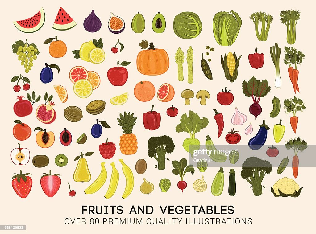 Mega collection of vector illustrations of fruits and vegetables