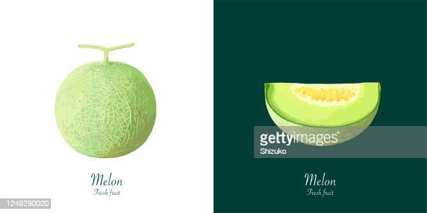 白と濃い緑の背景からメロン - 切る点のイラスト素材/クリップアート素材/マンガ素材/アイコン素材