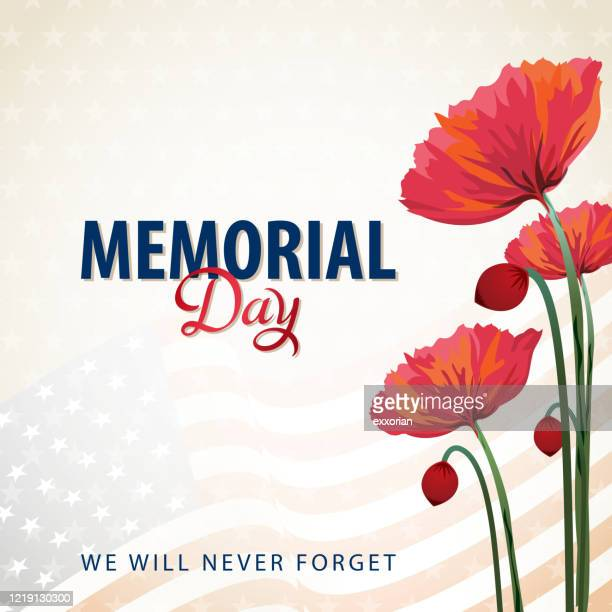 us memorial day poppies - us military stock illustrations