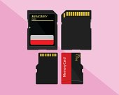 Memory Card, SD Card and Micro SD Card on pink background.