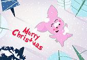 Merry Christmas banner design. Jolly piggy