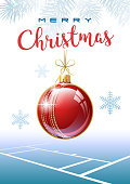 Merry Christmas. Sports greeting card. Cricket.