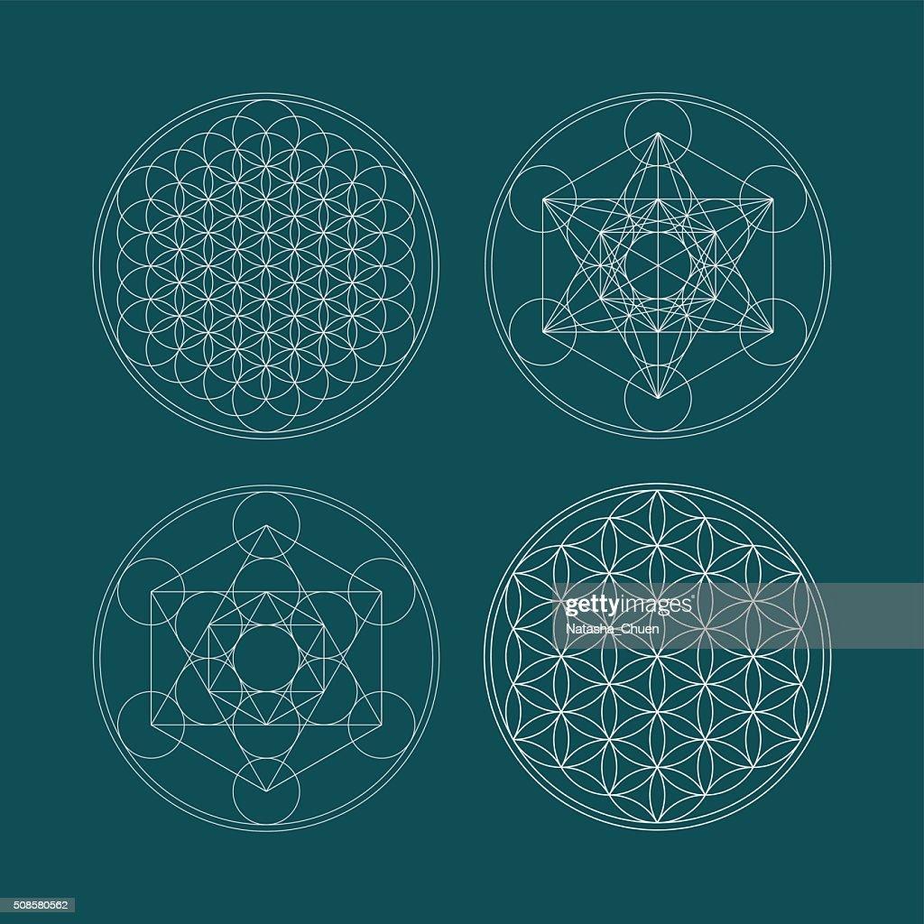 Metatrons Cube and Flower of life. : Vektorgrafik