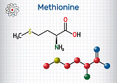 Methionine (l- methionine, Met , M) essential amino acid molecule.  Sheet of paper in a cage. Structural chemical formula and molecule model