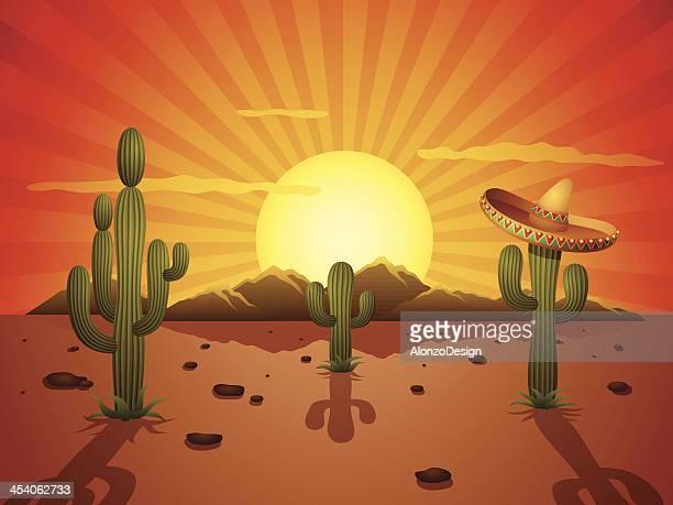 ilustraciones, imágenes clip art, dibujos animados e iconos de stock de mexicana desierto de - puesta de sol
