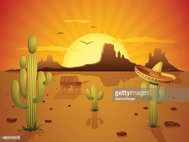 mexican desert - sombrero stock illustrations