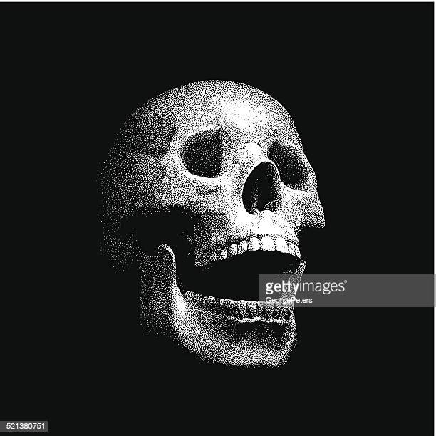 mezzotint illustration of a laughing human skull - laughing stock illustrations, clip art, cartoons, & icons