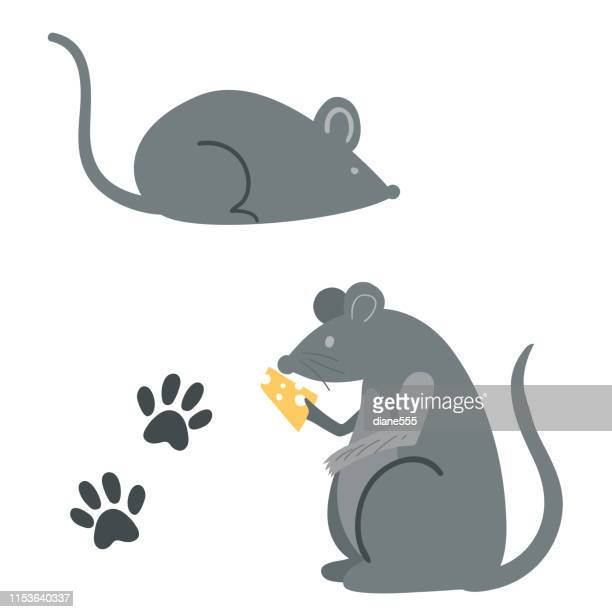 mice with paw prints - rodent stock illustrations