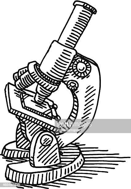 microscope science drawing - microscope stock illustrations
