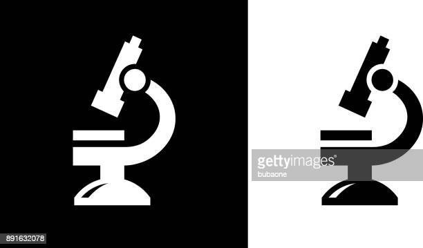 microscope. - magnification stock illustrations