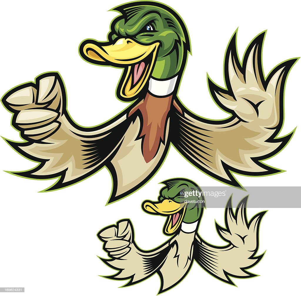 Mighty Duck : stock illustration