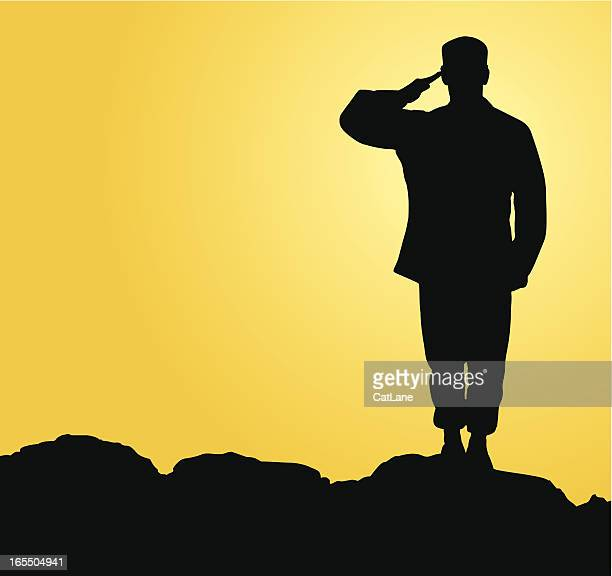 military salute - military stock illustrations, clip art, cartoons, & icons