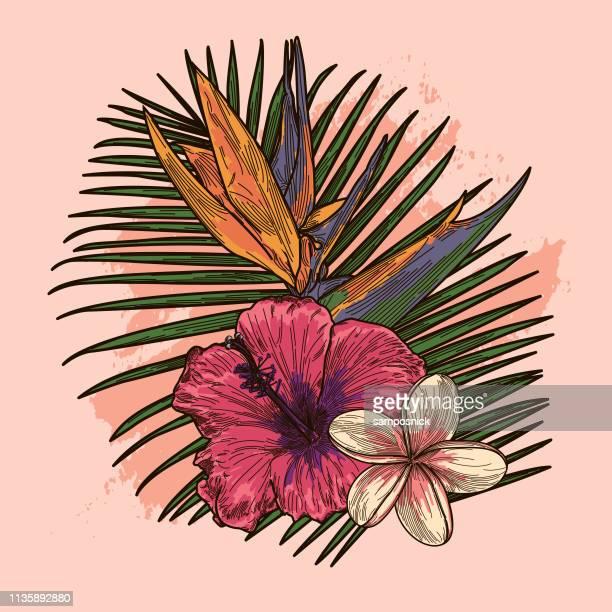 illustrations, cliparts, dessins animés et icônes de rose millénaire et corail tropical plante et bouquet floral - plante tropicale