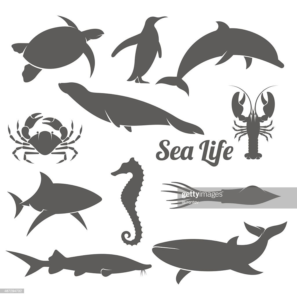 Minimal sea animals silhouette vector illustration