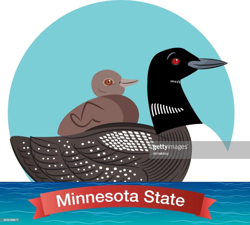 Minnesota State Bird - Common Loon