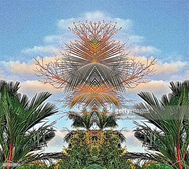 Spiegelmuster Dschungel Palmen