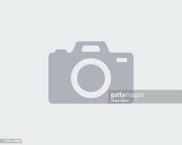 stockillustraties, clipart, cartoons en iconen met pictogram houder van ontbrekende afbeeldingscamera - failure
