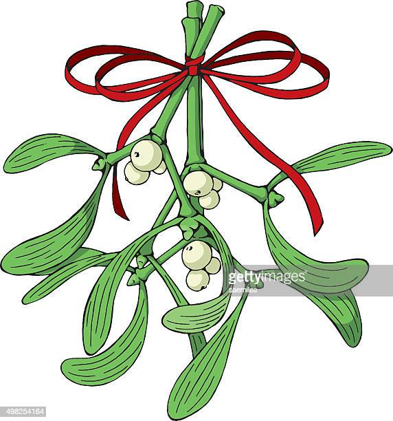 mistletoe with red ribbon - what color are the berries of the mistletoe plant stock illustrations