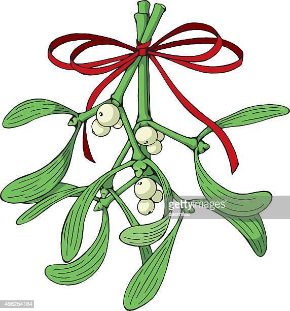 illustrations, cliparts, dessins animés et icônes de mistletoe avec un ruban rouge - gui
