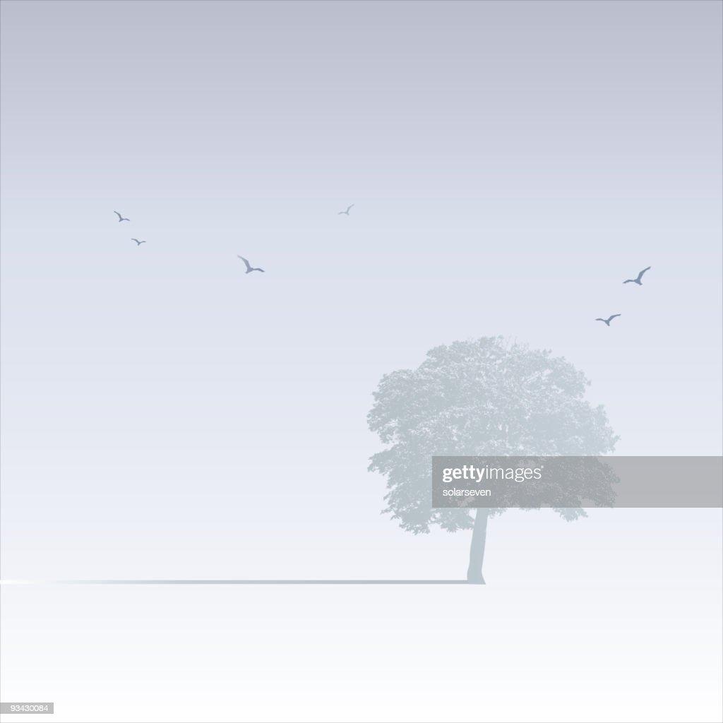 Misty Tree Scene