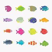 Mixed tropical fish
