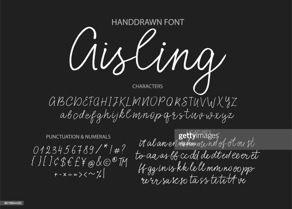 Modern calligraphic font. Brush painted letters