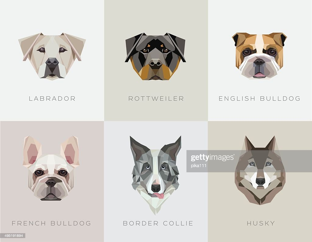 Modern contemporary geometric dog breeds vector illustrations